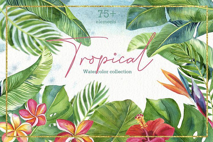 Tropic leaves&flowers Watercolor set