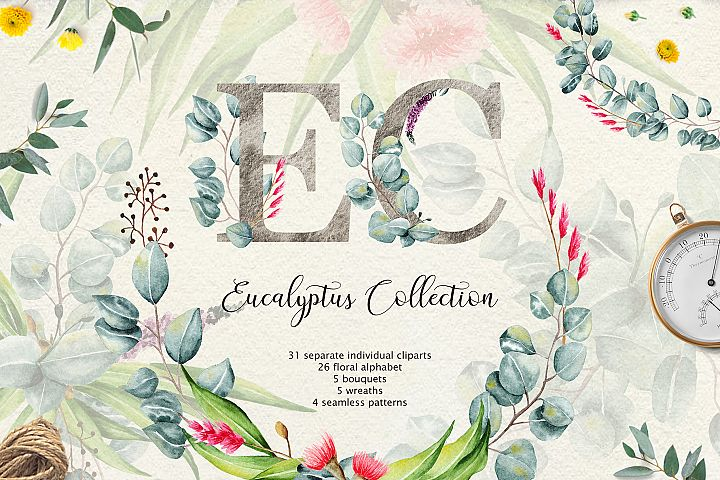 Eucalyptus CollectionLetter