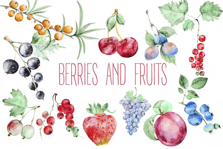Berries and fruits watercolor