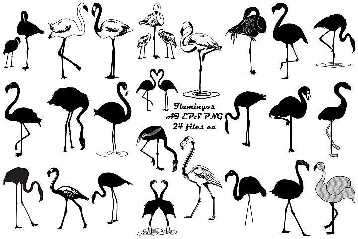 Flamingo Vector & Silhouettes AI EPS PNG