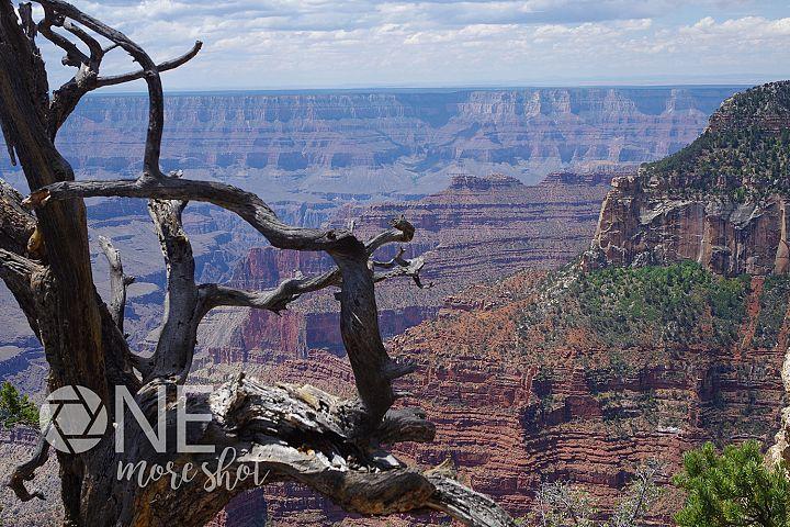 Grand Canyon Stock Photo - High Resolution Mountain Photo