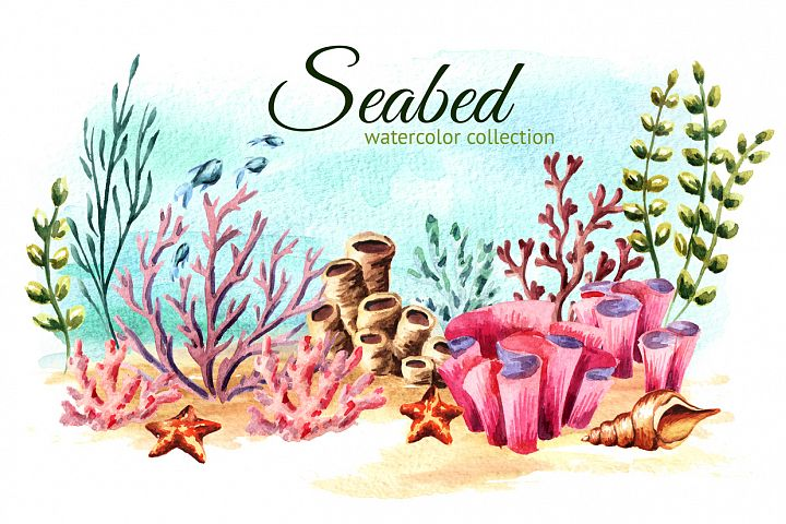 Seabed. Watercolor collection