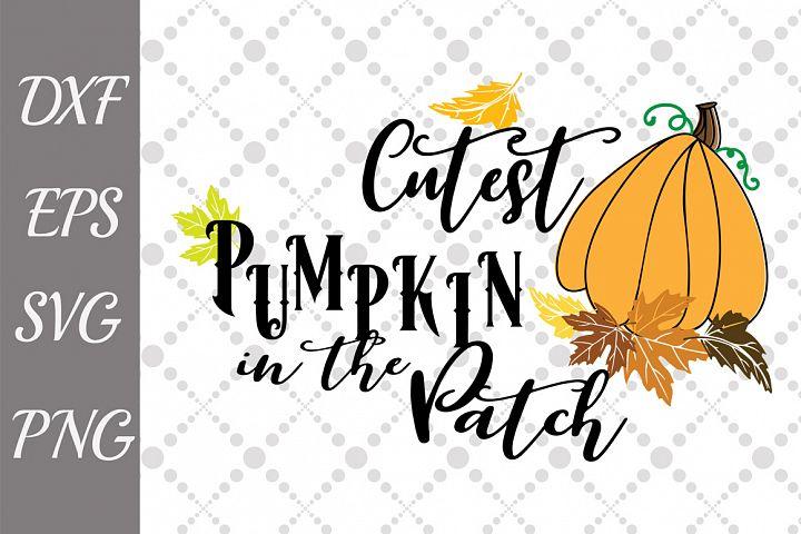 Cutest Pumpkin Svg, THANKSGIVING SVG, Autumn Cut File