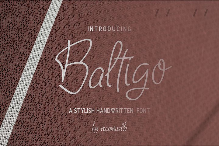 Baltigo Modern Handwritten