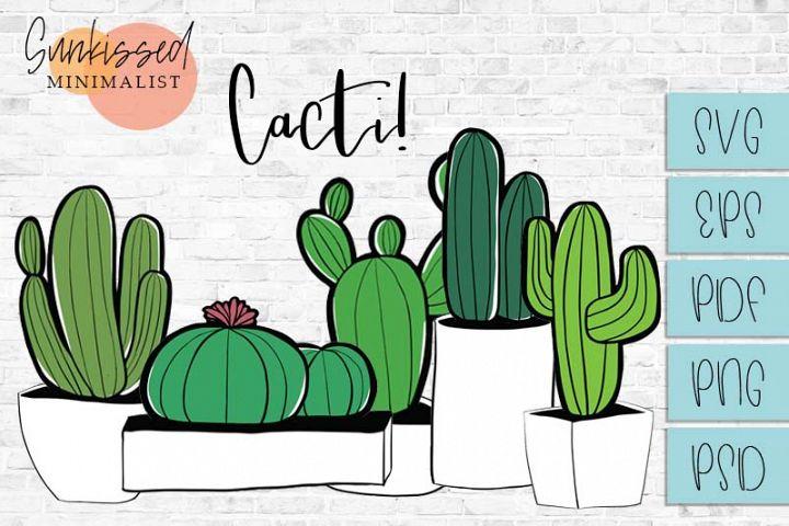 Set of Five Cactus Plants!