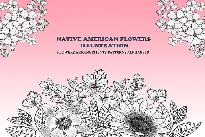 Native American Flowers Illustration
