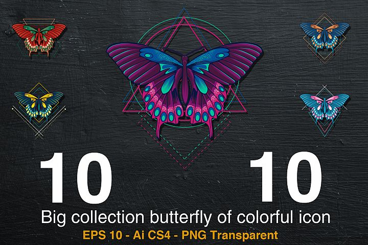 10 Big collection butterfly of colorful icon
