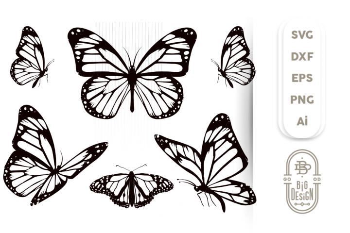 Butterfly Svg Bundle - 6 Monarch Butterfly Svg Cut Files