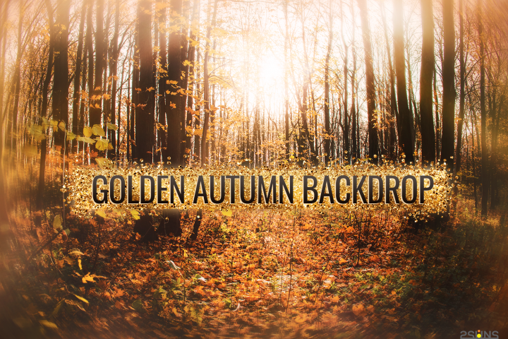 Autumn backdrop Photography Background fall outdoor editing
