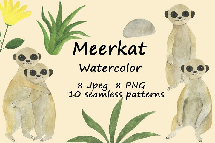 Set meerkats illustrations watercolor