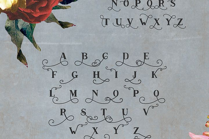 Conquistador Serif Font example image 5