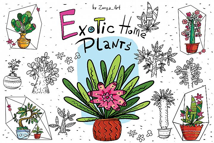 Exotic Home Plants - prints and cards