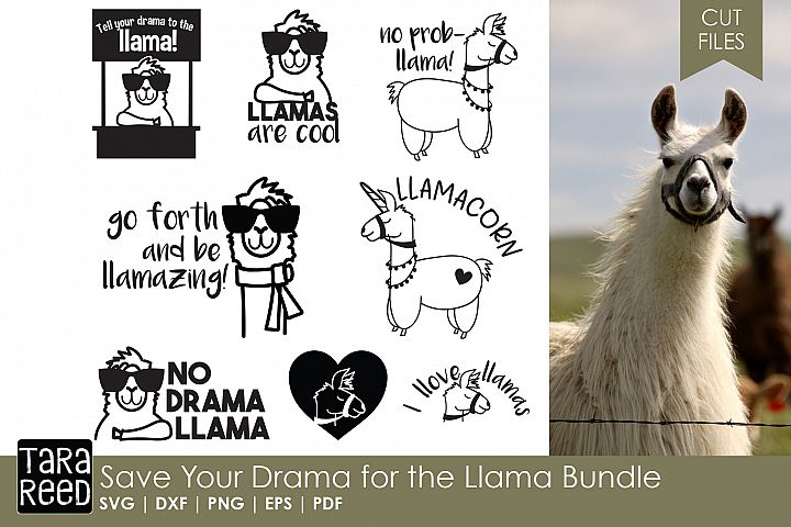 Save Your Drama for the Llama Bundle - Free Design of The Week