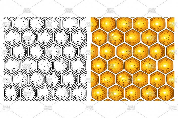 Honey Seamless Pattern honeycomb Vector color engraving