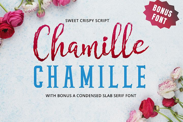 Chamille | sweet script example