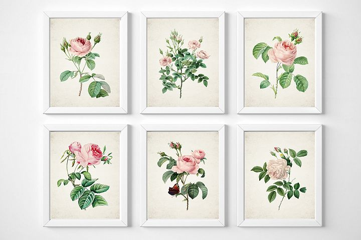 Rose Flower Wall Art, Rose Wall Art Print, Vintage Rose Art
