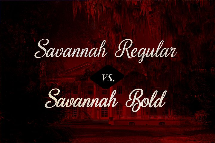 Sweet Home Savannah Font Duo - Free Font of The Week Design3