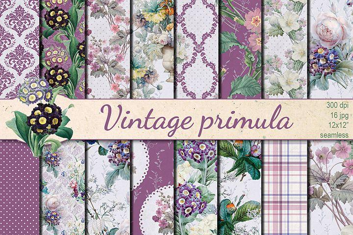 Vintage Primula seamless patterns