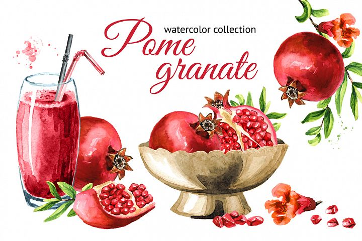Pomegranate. Watercolor collection