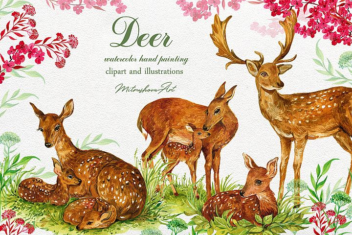 Deer watercolor clipart illustration