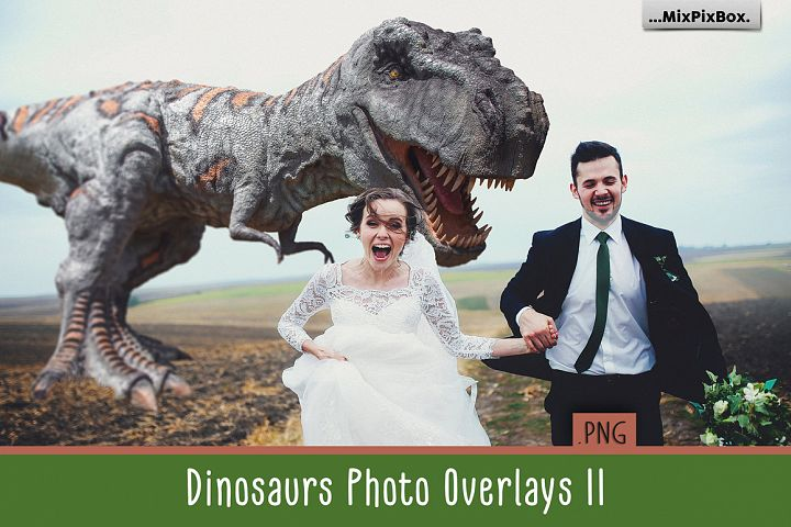 Dinosaur v.2 Photo Overlays