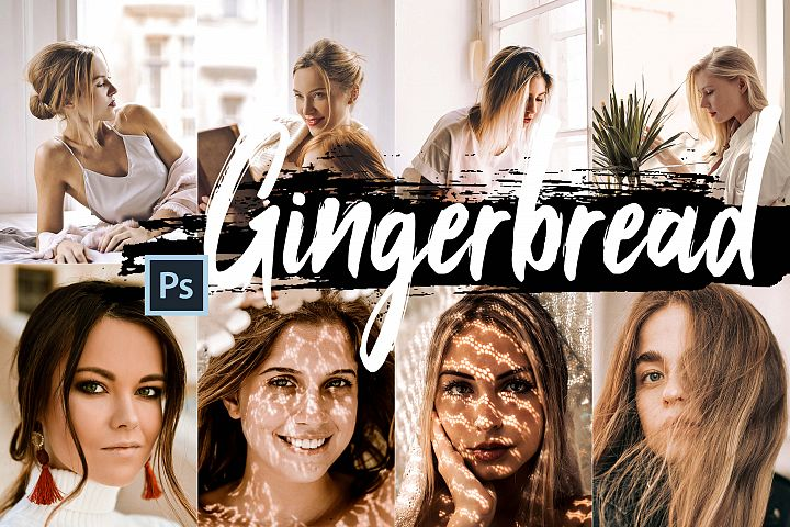 5 Gingerbread Actions, ACR and LUT presets