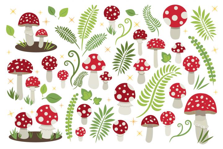 Toadstool Mushroom Clip Art Set