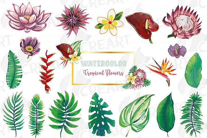 Tropical watercolor flowers and leaves clip art, floral deco
