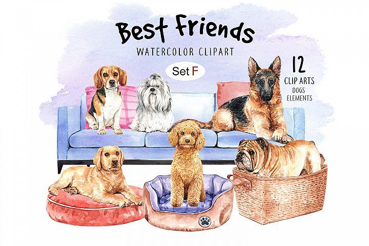 Dog watercolor clipart, Pet clip arts, Dog Set F