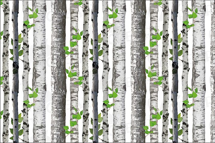 Seamless birch tree vector watercolor pattern. Birch barks