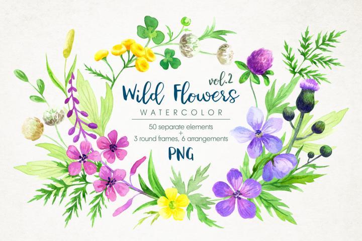 Wild flowers 2. Watercolor set.