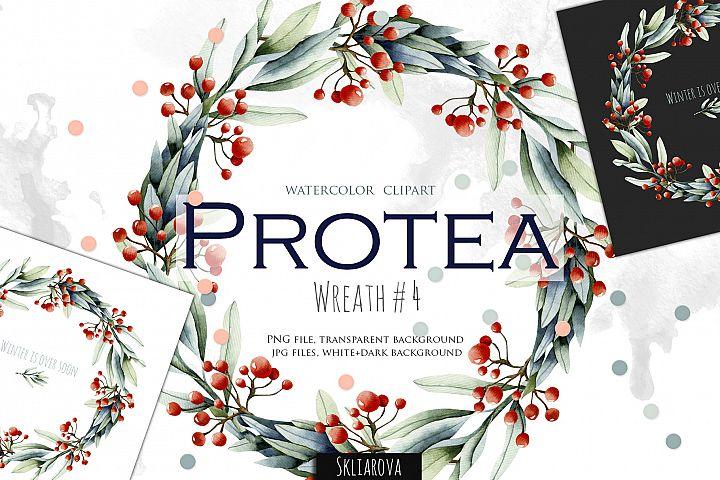 Protea. Wreath #4