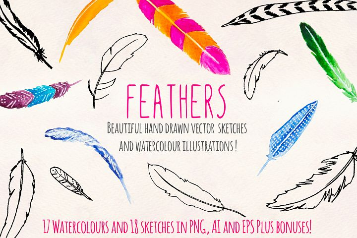30 Bird Feathers Ink and Watercolor Graphics