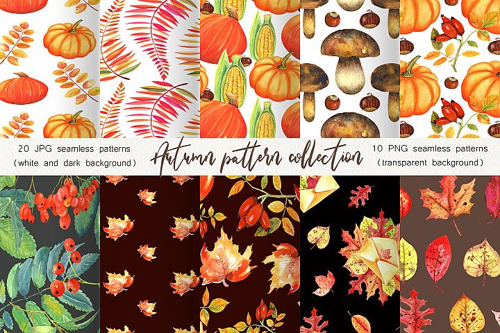 Autumn Pattern Collection