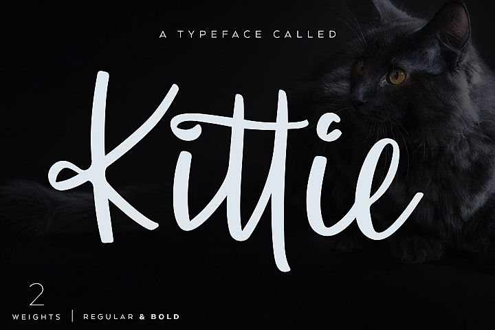 Kittie | Regular & Bold