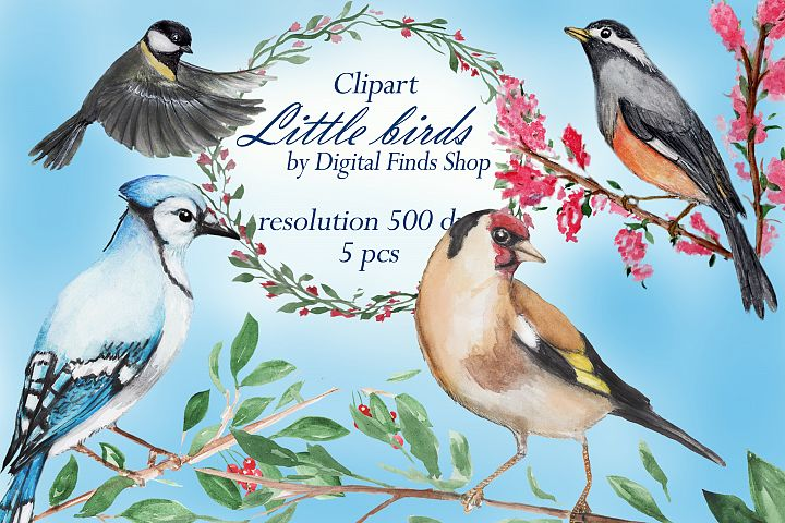 Bird clipart, watercolor birds clipart goldfinger