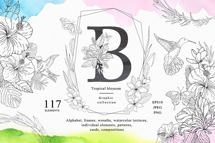 Tropical blossom graphic collection