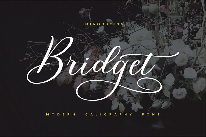 Bridget Script