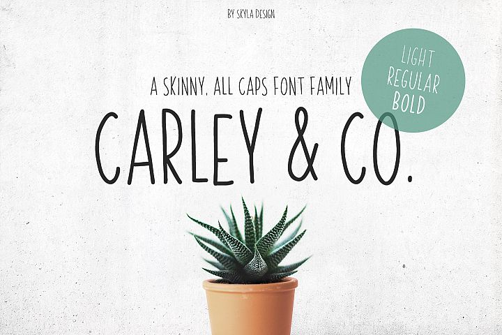 Skinny, handwritten, All Caps font family Carley & Co.