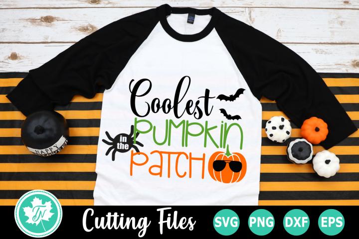 Coolest Pumpkin in the Patch - A Fall SVG Cut File