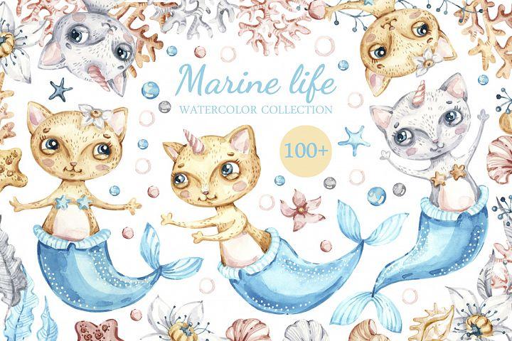 Marine Life, Cat Mermaids, seashells watercolor collection.