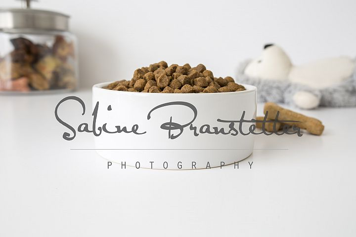 Styled Stock Photography White Pet Bowl Mockup