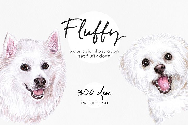 Watercolor set white fluffy dog illustrations. 10 Dogs