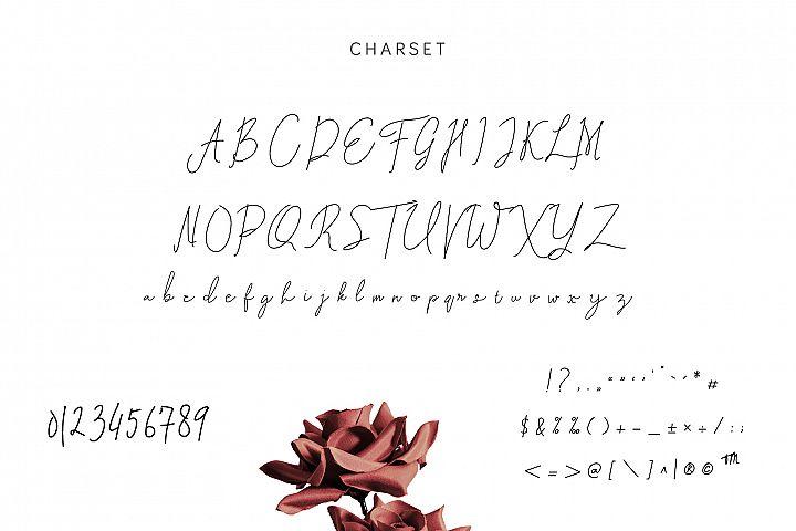Tottenham Script Font example image 5