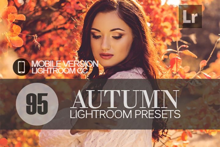 95 Autumn Lightroom Mobile bundle Presets