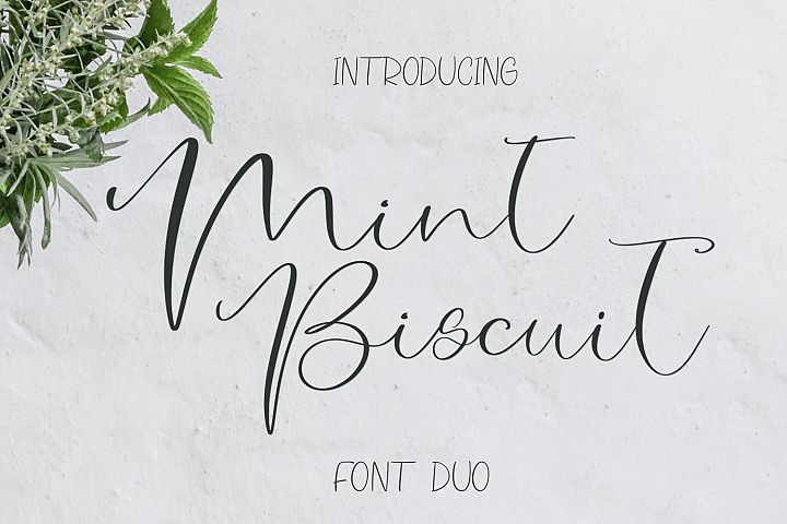 Mint Biscuit Font Duo