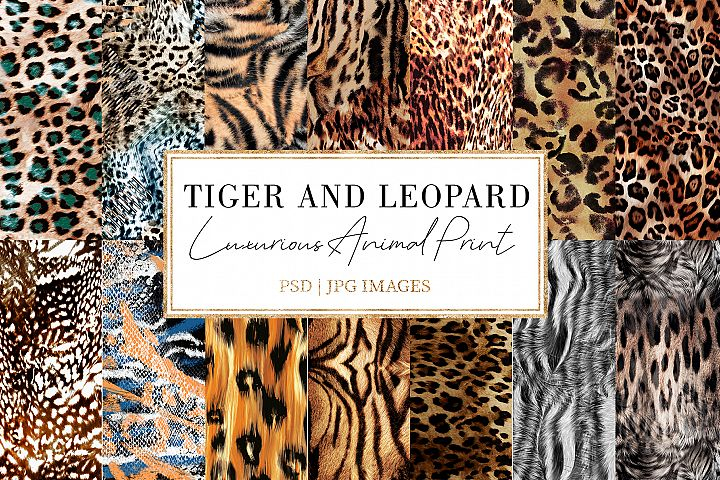 Tiger and Leopard|Animal Print Bundle
