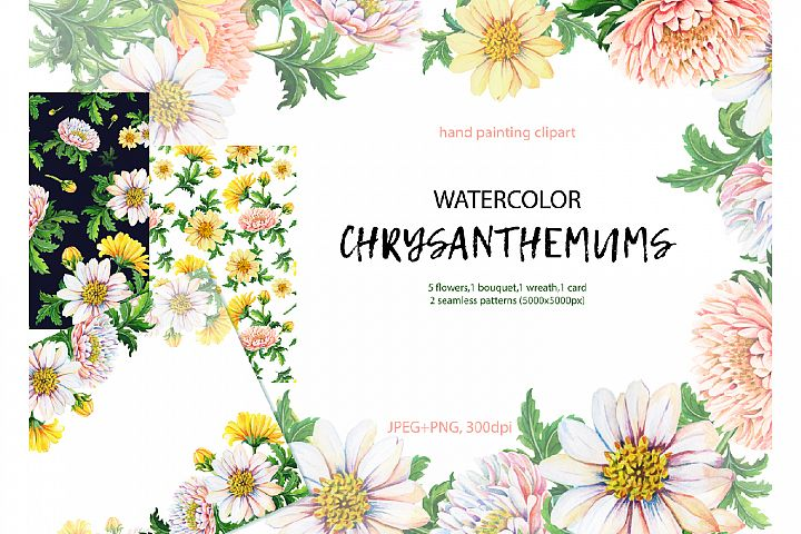 Watercolor chrysanthemums.