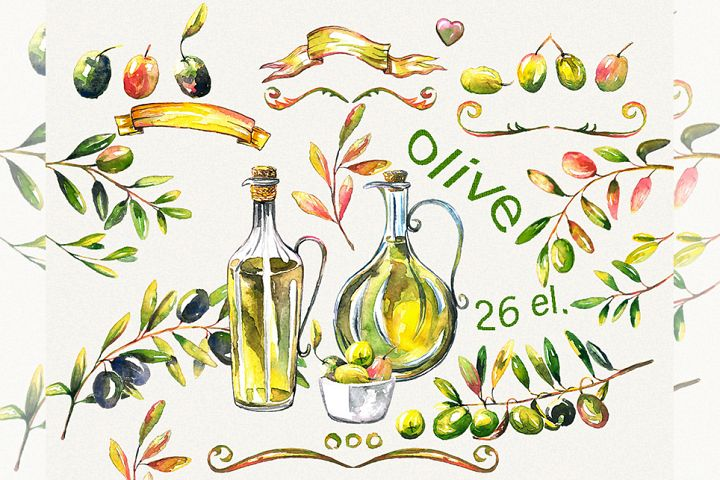Olive clipart, Watercolor olive clipart, italian clipart