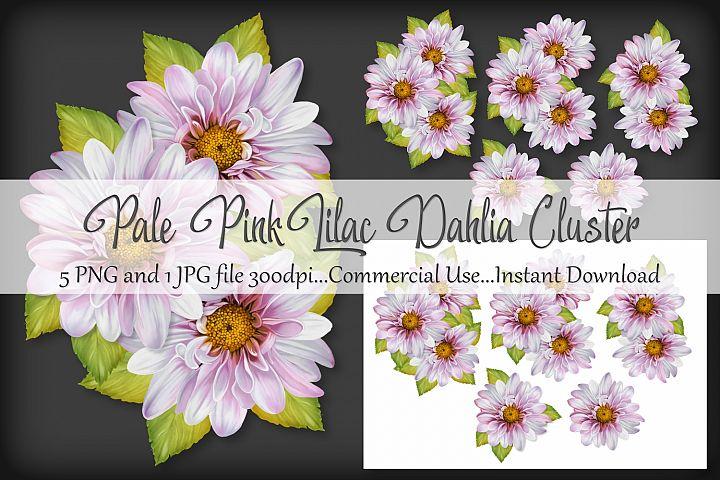 Pale Pink Lilac Dahlia Cluster Bouquet Vignette Clipart